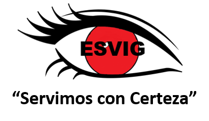 ESVIG SECURITY